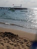 Strand vom TUI BLUE